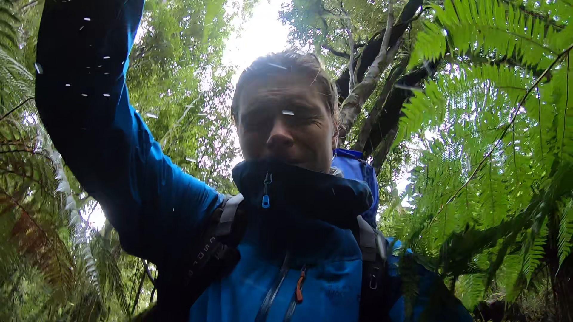 La forêt néo-zélandaise était sauvage et intimidante, elle m'a appris à surmonter mes peurs pour pouvoir avancer.